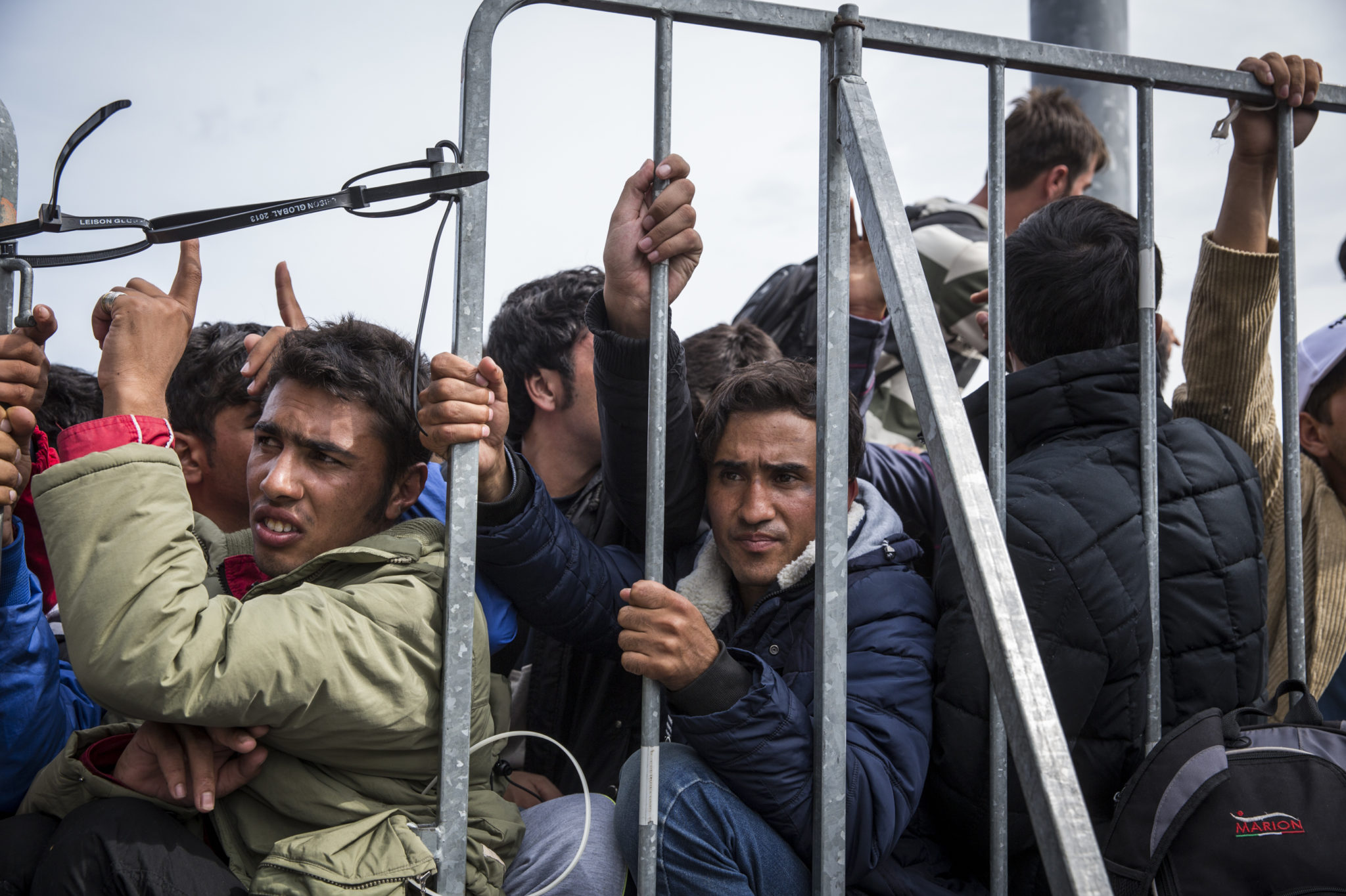 طالبي اللجوء الجدد
